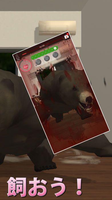 与熊同居~恐怖的熊养成游戏~iOS版截图1