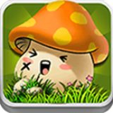 天天打蘑菇h5最新版正式版v1.0.0