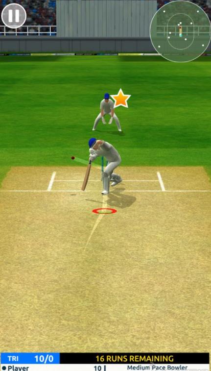 板球超级巨星的游戏截图 3