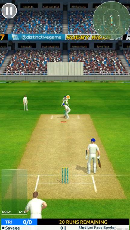 板球超级巨星的游戏截图 4