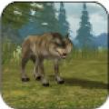 3D野狼模�M器
