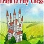 国际象棋小子