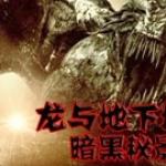 龙与地下城2:暗黑秘影