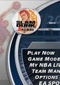 NBA2004灌篮高手版