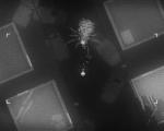新作《黑夜降�R》�A告片公布 10月22日登�PC