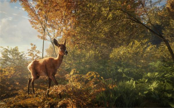 《猎人:荒野的呼唤》实机宣传片欣赏 靓丽风景一览无余