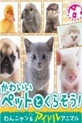 和可爱宠物一起生活 猫狗动物明星